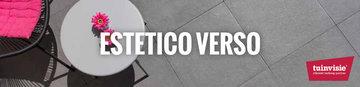 Estetico-verso